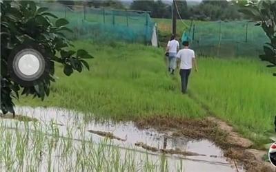 两幼童遇害被抛至河内 嫌犯系同村15岁男孩